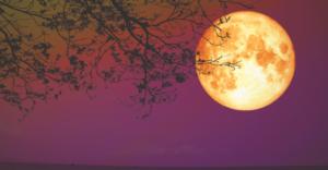 Volle maan 20 oktober 2021